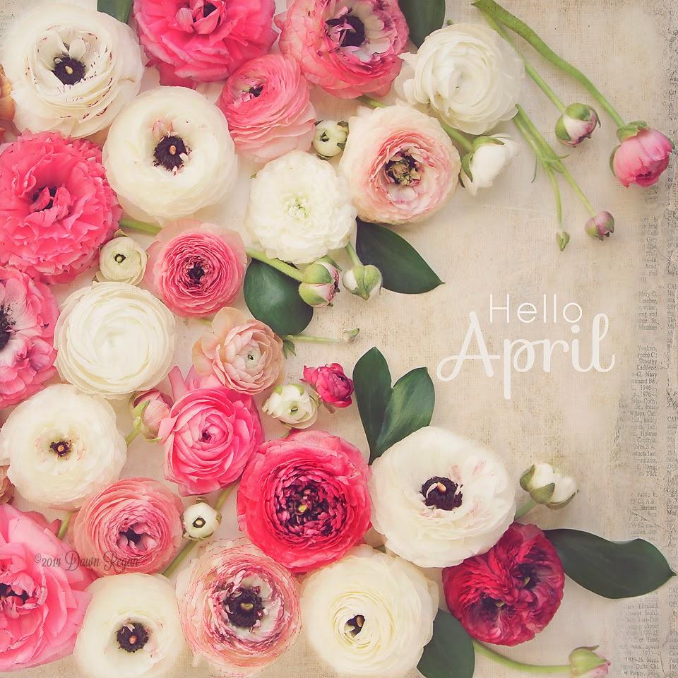 нов месец